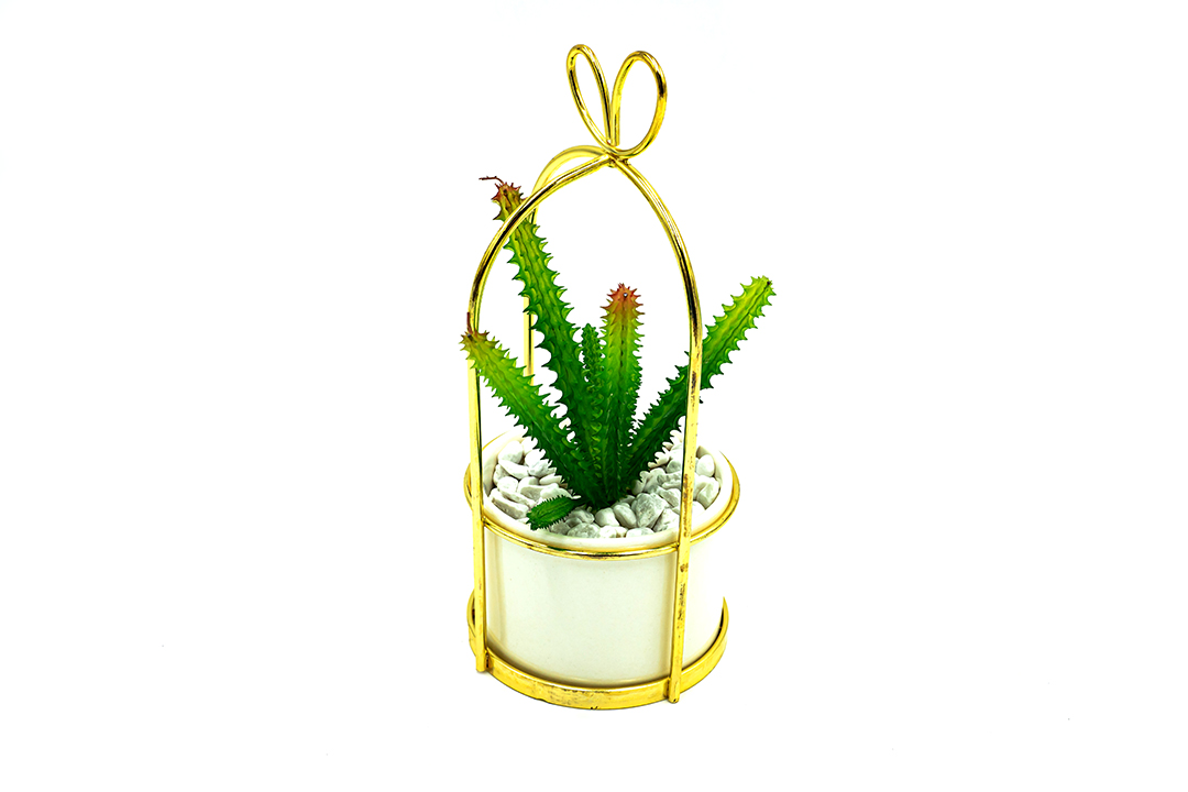 Artificial plant ต้นไม้ปลอม ต้นไม้ประดับตกแต่ง Cactus No.5 รุ่น ST210507-2E