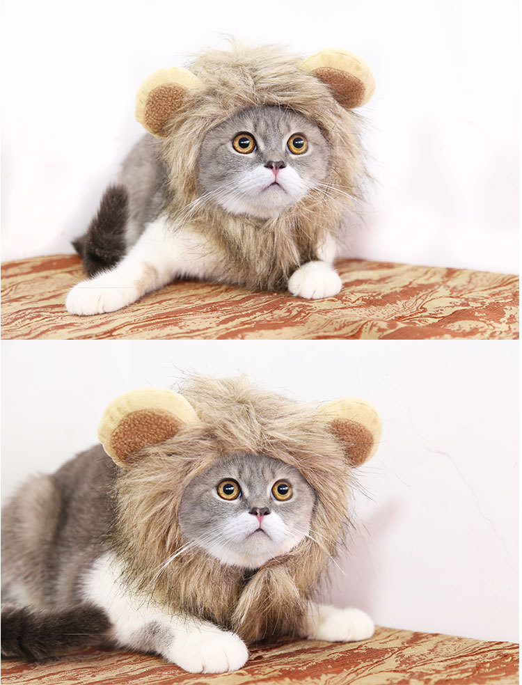 Cute pet hat หมวกแมว,หมวกสุนัข,หมวกแฟนซีขนาด 30 ซม.ลายสิงโต ST210420-11